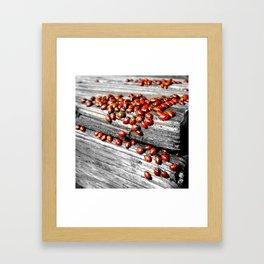 When the Ladybugs were Everywhere Framed Art Print