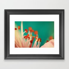 First Blossom Framed Art Print