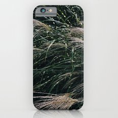 Indiana Jungles Slim Case iPhone 6s