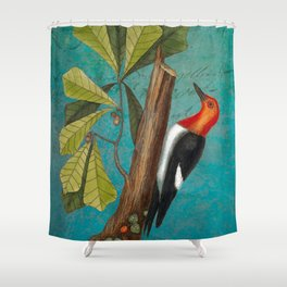 Red Headed Woodpecker with Oak, Natural History and Botanical collage Shower Curtain