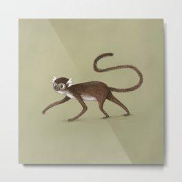 Squirrel Monkey Walking Metal Print