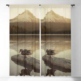 The Oregon Duck Blackout Curtain