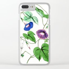 A Purging Pharbitis Vine in full blue and purple bloom - Vintage illsutration Clear iPhone Case