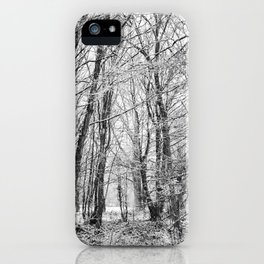 Winter Forest scenic. iPhone Case