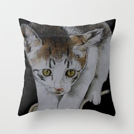 Focused cat Throw Pillow