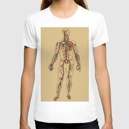 Circulatory System 2 T-shirt