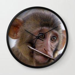 Watercolor Rhesus Monkey Wall Clock