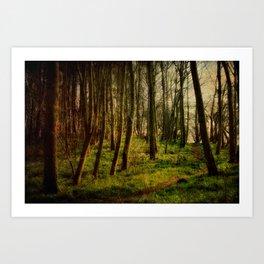 Bunkers Hill Edgefield 1 Art Print