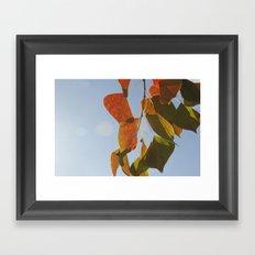 Glowing Leaves Framed Art Print