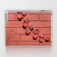Red on Red Laptop & iPad Skin