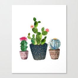 Watercolor cactus trio | hand painted cactus print Canvas Print