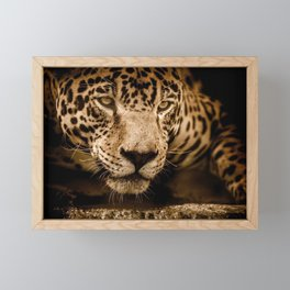 Magnificent Adorable Fearsome Adult Leopard Face Close Up Ultra HD Framed Mini Art Print
