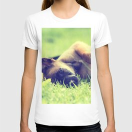 Bedtime for the small puppies T-shirt