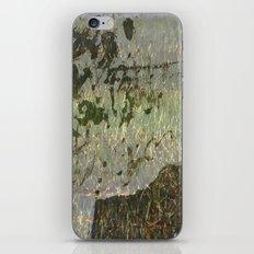 Dedication to Cy iPhone & iPod Skin