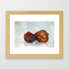 Physalis Part VIII. Framed Art Print