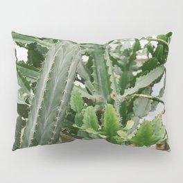 Botanical Cactus Pillow Sham