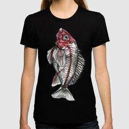 Acadian Redfish T-shirt
