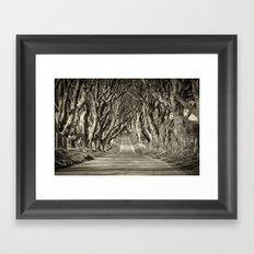 The Dark Hedges Framed Art Print