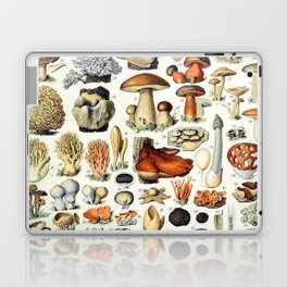 Adolphe Millot - Champignons A - French vintage poster Laptop & iPad Skin