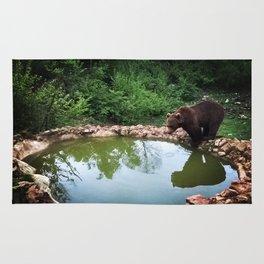 Bear in natural habitat Rug