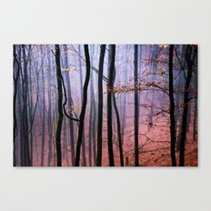 Foggy fall forest photography Canvas Print