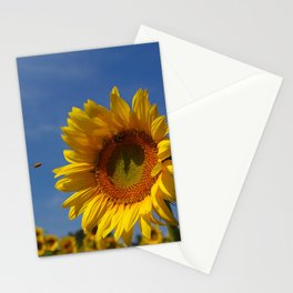 Sunny Summer Sunflower Stationery Cards