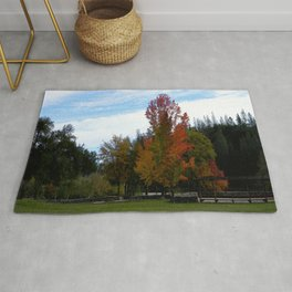 Fall colors in Shasta County, California Rug