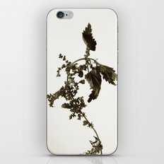 Florales · plant end 6 iPhone & iPod Skin