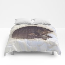 Furball Comforters