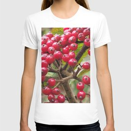 Wild fruit of Oreum , Jeju Island, Korea. T-shirt