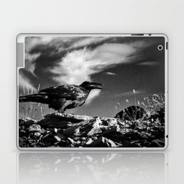 Raven and Clouds Laptop & iPad Skin