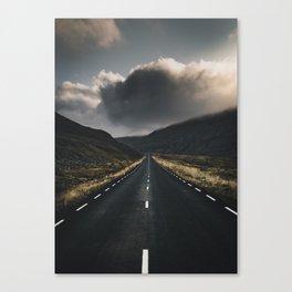 Road 2 Canvas Print