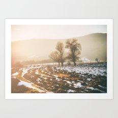 Morning field Art Print