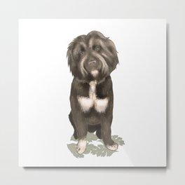 Cute Fluffy Pooch Portrait Metal Print