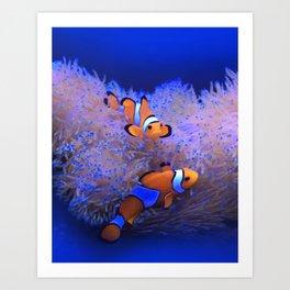 Clown Fish Art Print