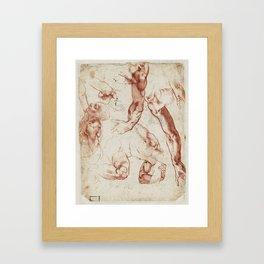 Leonardo Da Vinci anatomical studies Framed Art Print