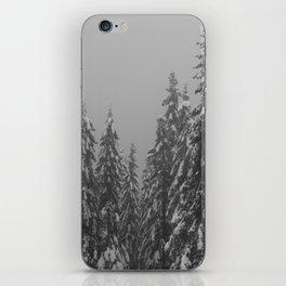 Snow Trees iPhone Skin