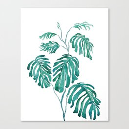 Monstera painting 2017 Canvas Print