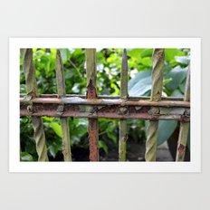 Rusty fence Art Print