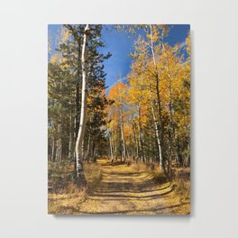 A Fall Drive Among the Aspens by TL Wilson Photography Metal Print