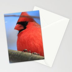 The Cardinal Portrait Stationery Cards