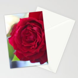 Rose Heart Stationery Cards