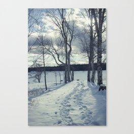 Uniacke 2 Canvas Print