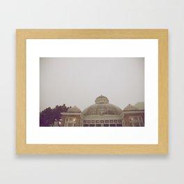 Allan Gardens Conservatory III Framed Art Print
