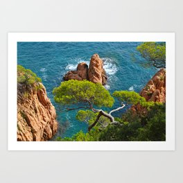 Pine tree and red rocks in the sea Art Print