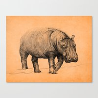 hippo Canvas Prints featuring Hippo by 1 of 20