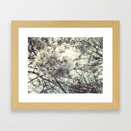 Some flowers grow Framed Art Print