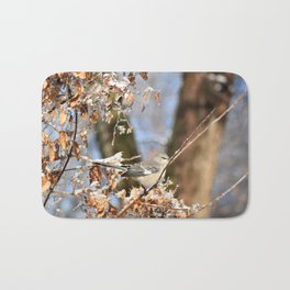 Winter bird Bath Mat
