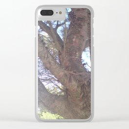Pinie Clear iPhone Case