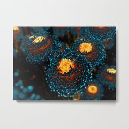 Electric Dahlia Metal Print